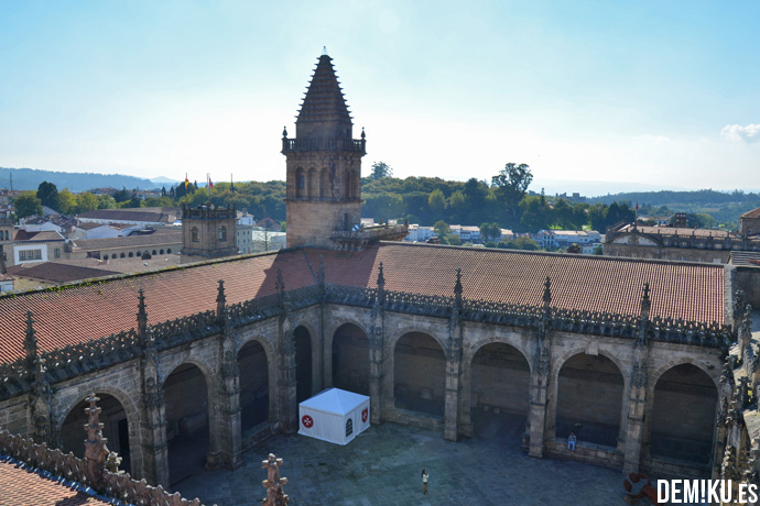 cubiertas-tejados-catedral-santiago-(6)