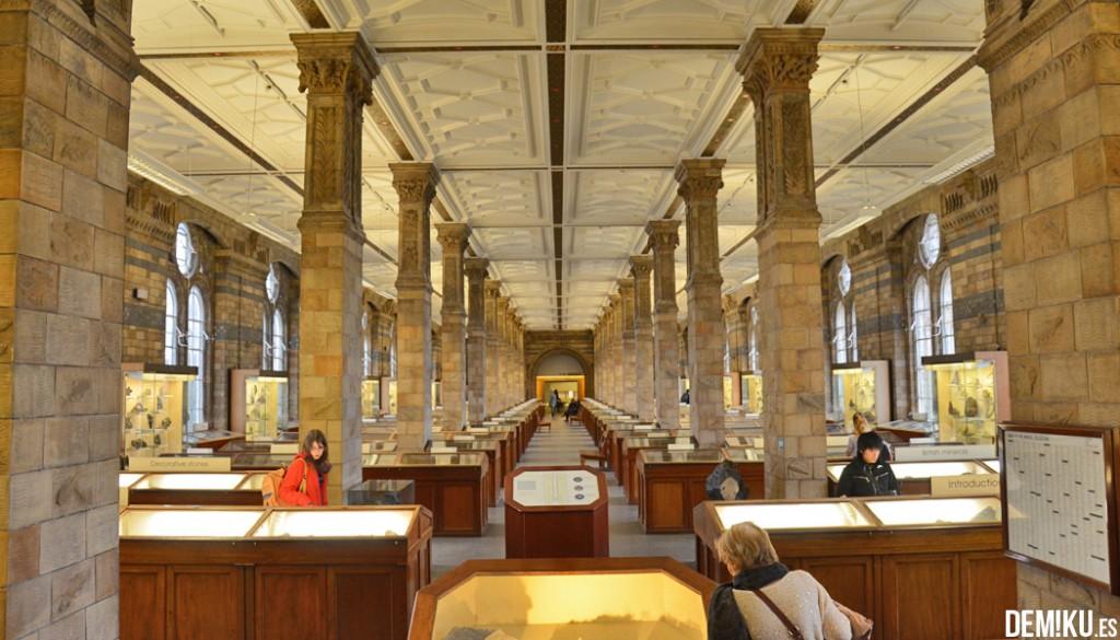 museo-historia-natural-Londres (11)