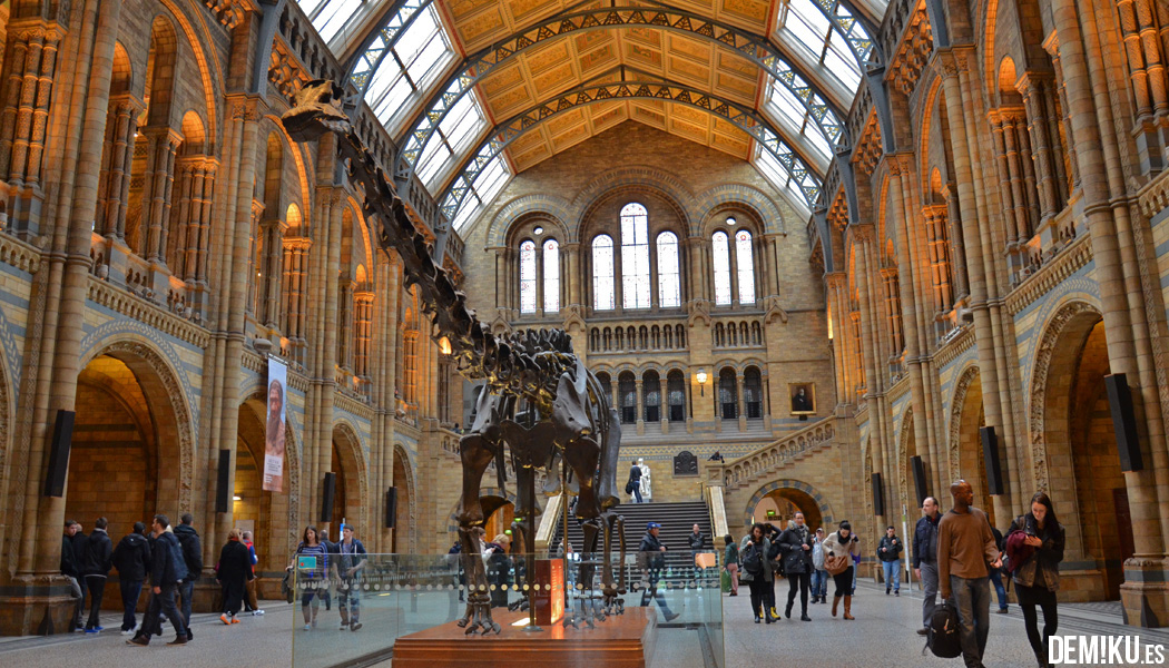 Museo Historia Natural Londres Hall Dinosaurio Dippy