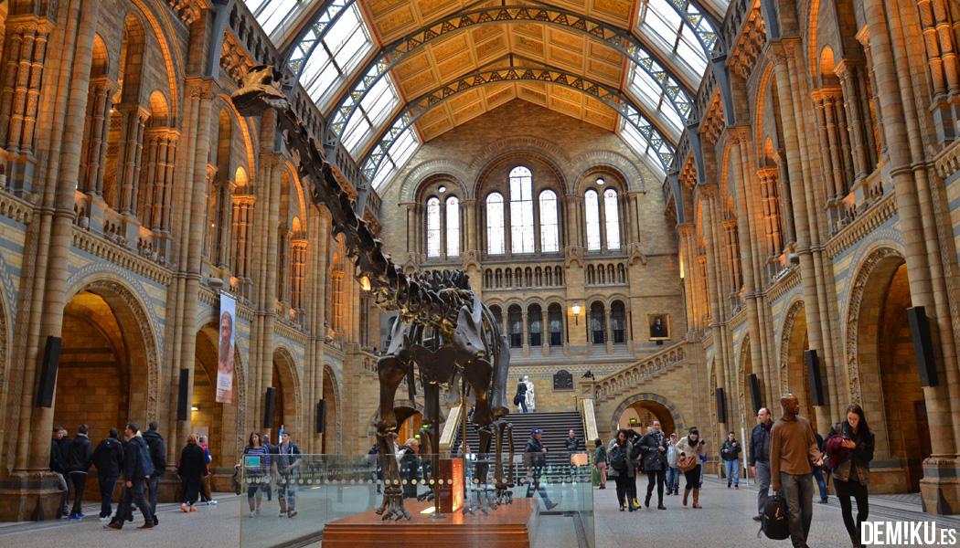 Museo Historia Natural Londres Hall Dinosaurio Dippy