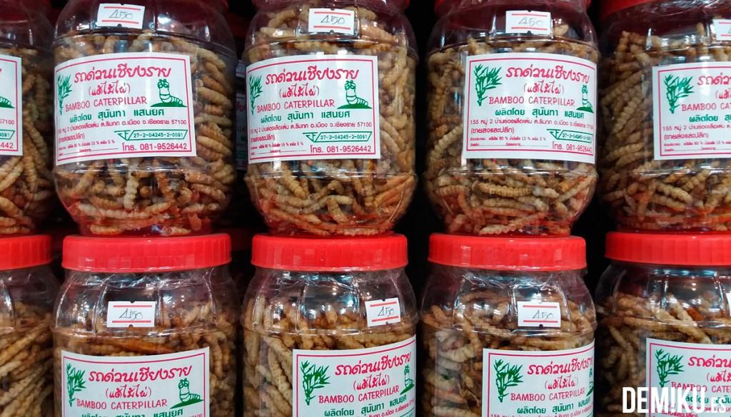 Gusanos Bambu Tailandia
