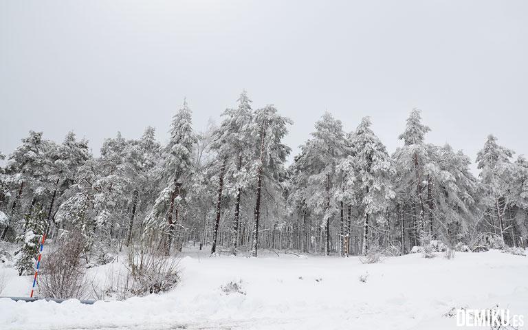 ancares_nieve_7