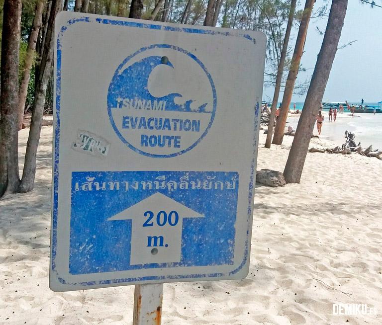 Cartel tsunami